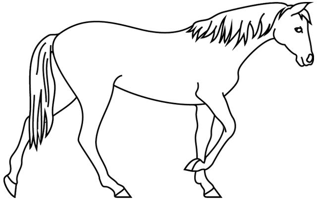 Coloriage À Imprimer, Un Cheval Qui Marche - Turbulus encequiconcerne Dessin De Cheval À Imprimer