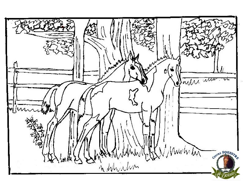 Coloriage Cheval À Imprimer Pour Les Enfants - Cp07306 dedans Dessin De Cheval À Imprimer