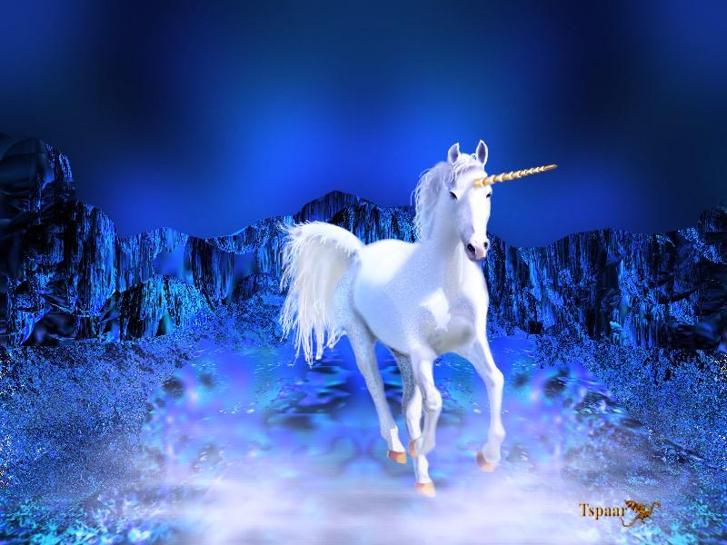 Paardengifjes05 concernant Dessin De Cheval À Imprimer