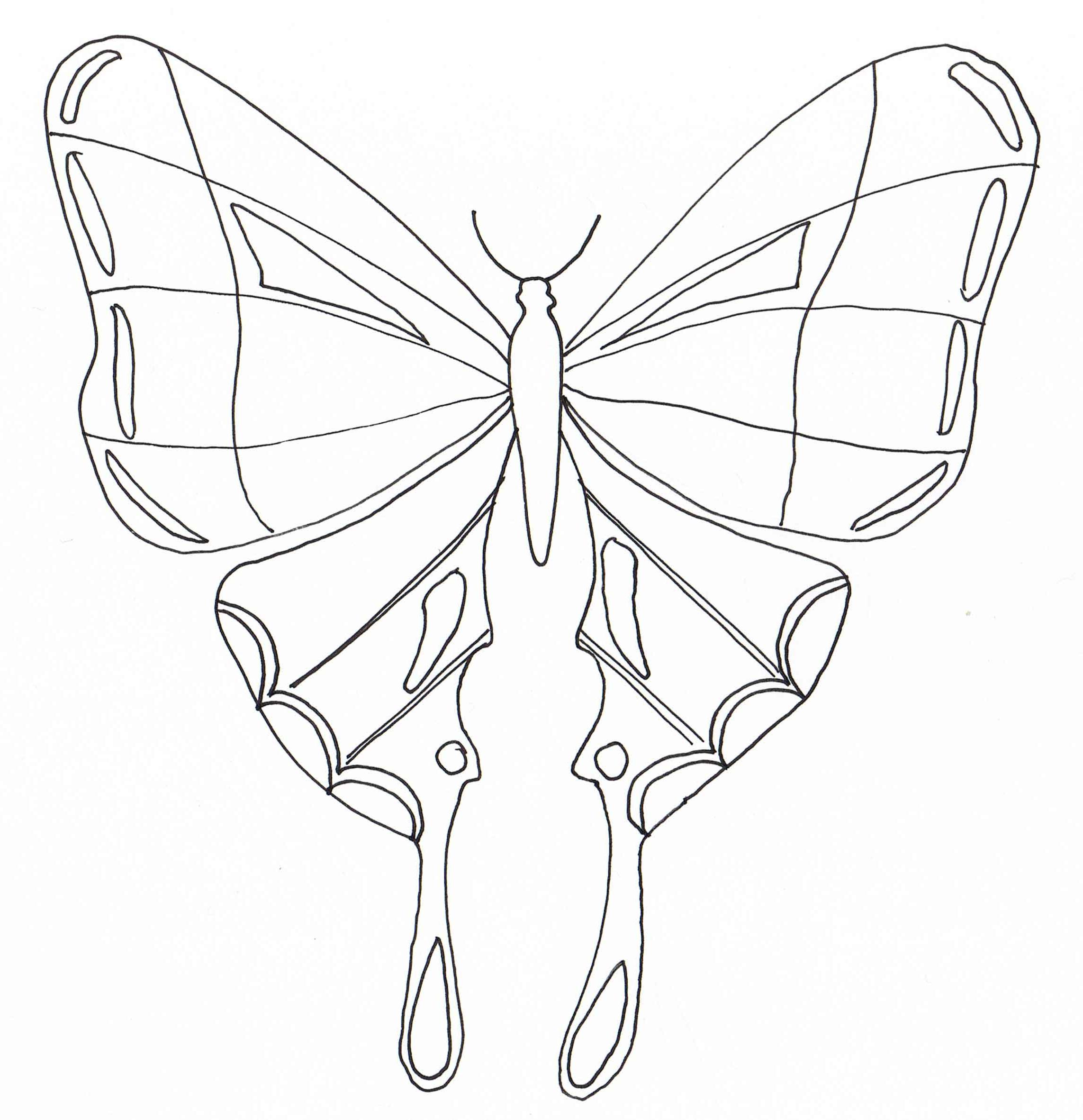10 Nouveau De Coloriage Papillon Collection - Coloriage concernant Coloriage Papillon