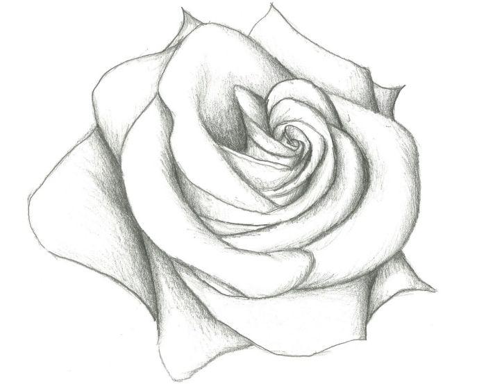 1001 + Modèles Et Conseils Pour Apprendre Comment Dessiner à Dessin De Rose A Imprimer