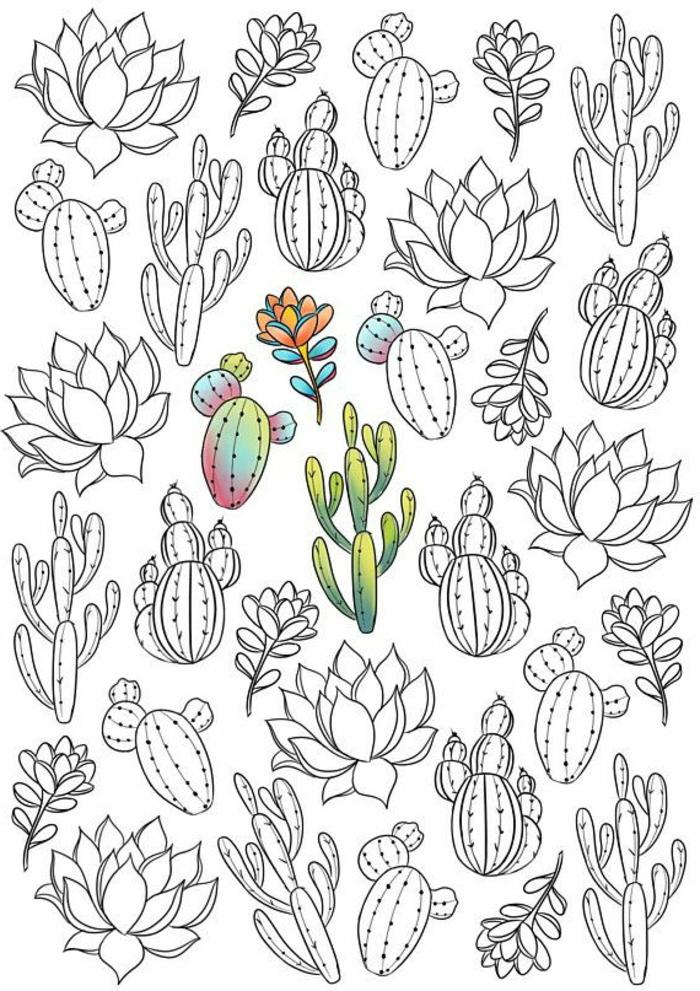 1001 + Pages De Coloriage Anti-Stress Pour Garder L'Esprit encequiconcerne Coloriage Cactus A Imprimer