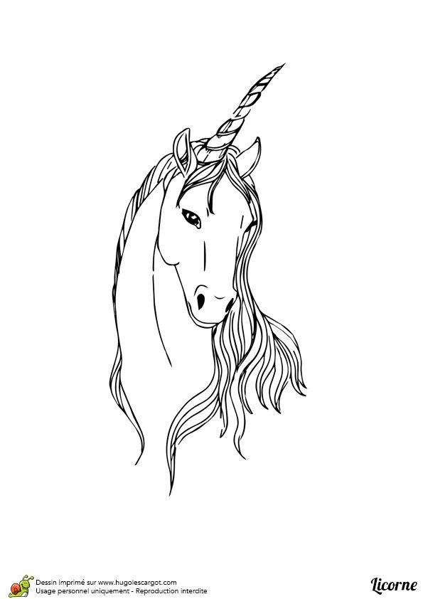 15 Best Dessin Tete De Cheval Images On Pinterest | Horse pour Dessin A Imprimer Licorne