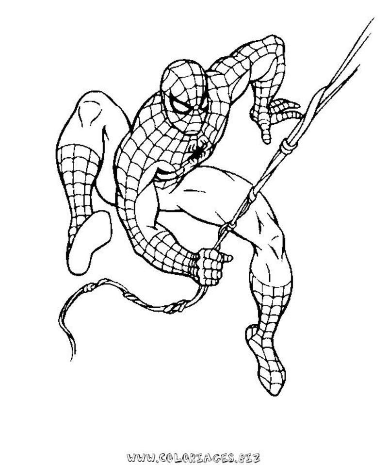 167 Dessins De Coloriage Spiderman À Imprimer Sur dedans Coloriage De Spiderman Noir