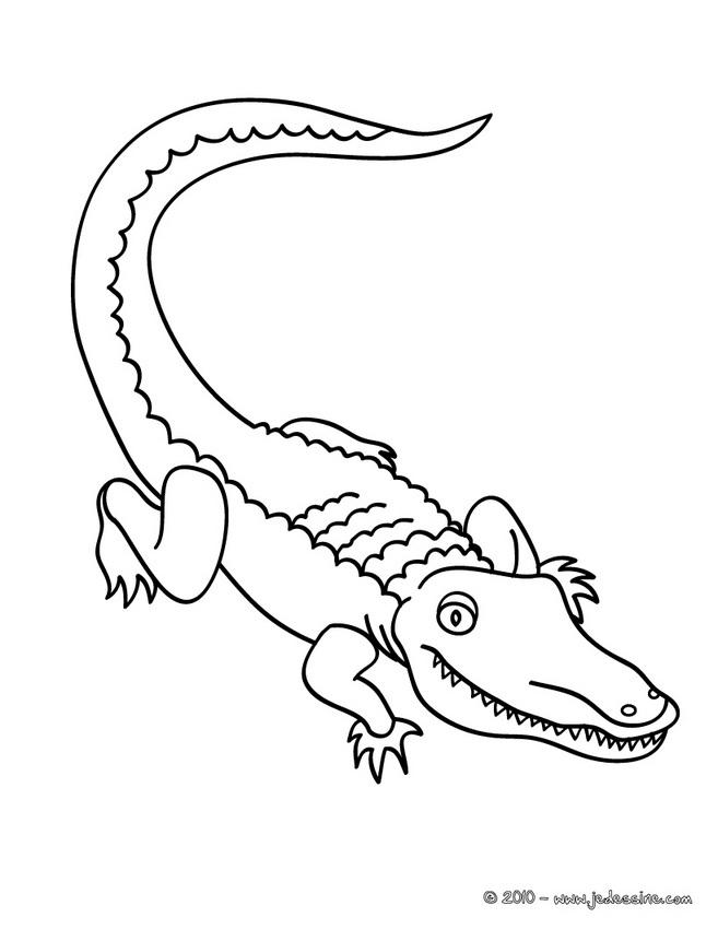20 Dessins De Coloriage Crocodile Gratuit À Imprimer destiné Coloriage Crocodile A Imprimer Gratuit