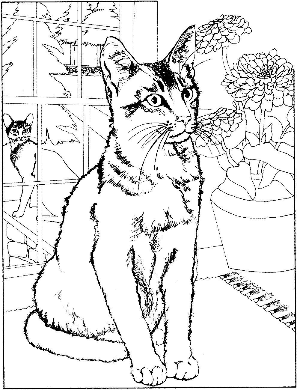260 Dessins De Coloriage Chat À Imprimer Sur Laguerche encequiconcerne Image De Chat A Imprimer