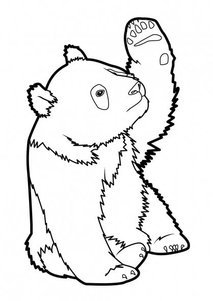 33 Dessins De Coloriage Panda À Imprimer dedans Panda A Colorier