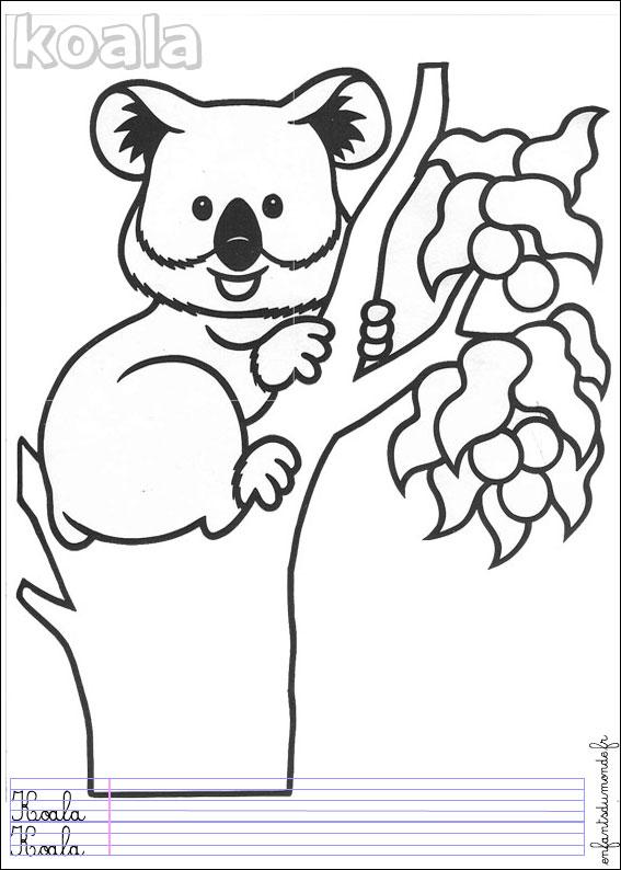 45 Dessins De Coloriage Koala À Imprimer intérieur Coloriage Koala A Imprimer