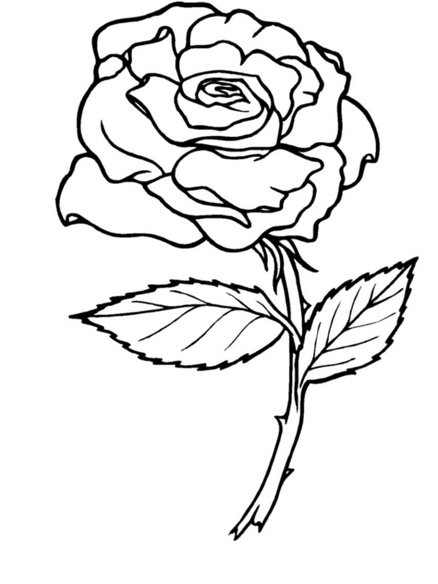 57 Dessins De Coloriage Roses À Imprimer Sur Laguerche tout Dessin De Rose A Imprimer