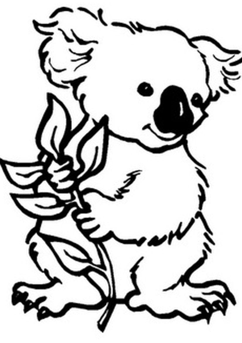 77 Dessins De Coloriage Koala À Imprimer Sur Laguerche destiné Coloriage De Koala