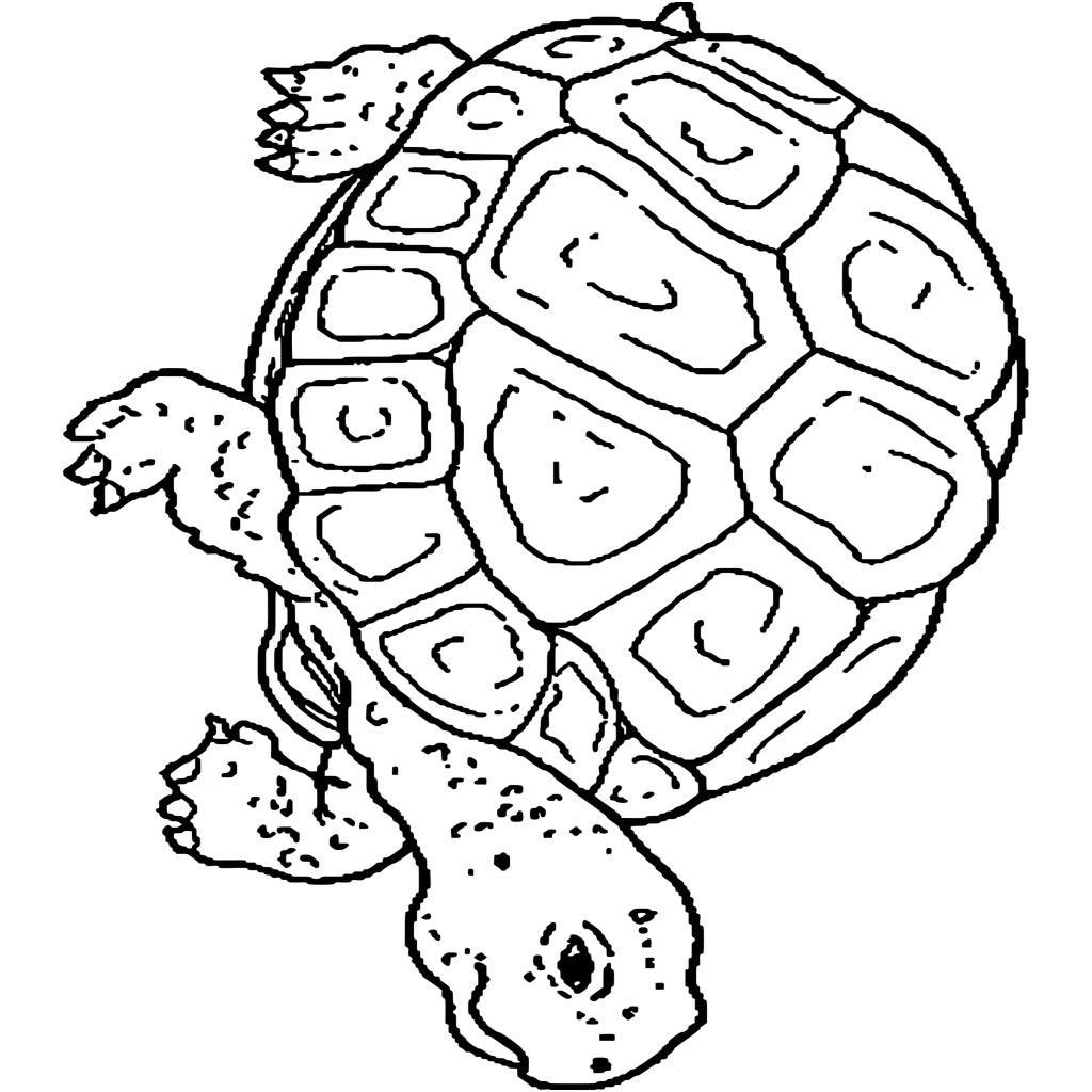 8 Unique Hugo L'Escargot Coloriage Magique Stock - Coloriage tout Hugo L'Escargot