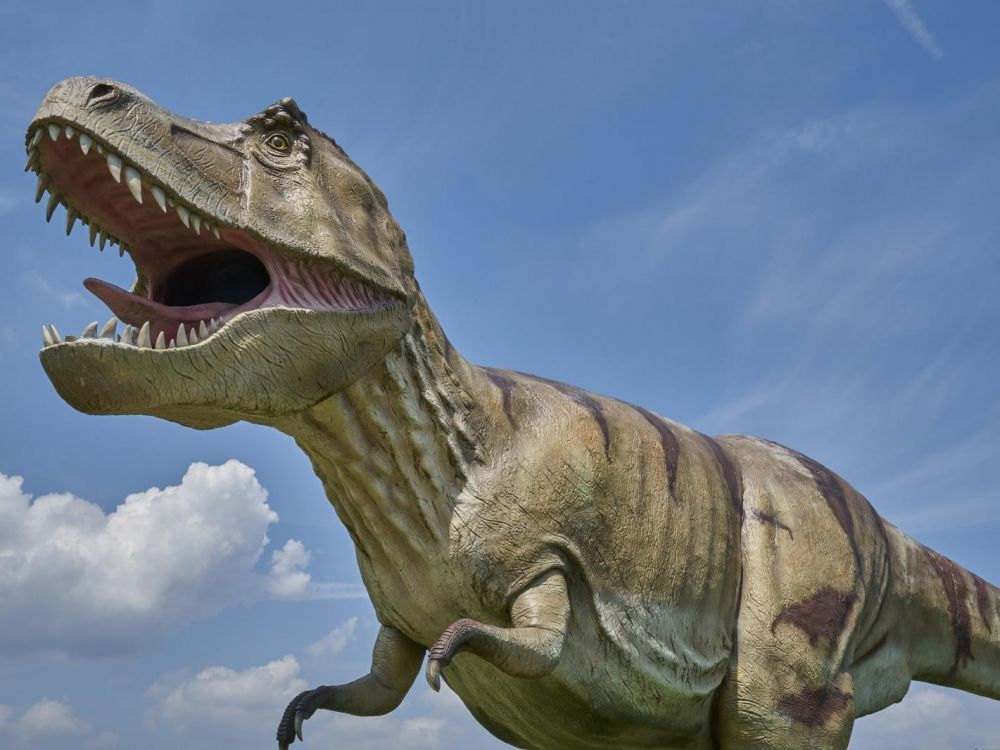 A Quoi Servaient Les Bras Du T. Rex ? - Sciences Et Avenir pour Dinosaure Tyrex