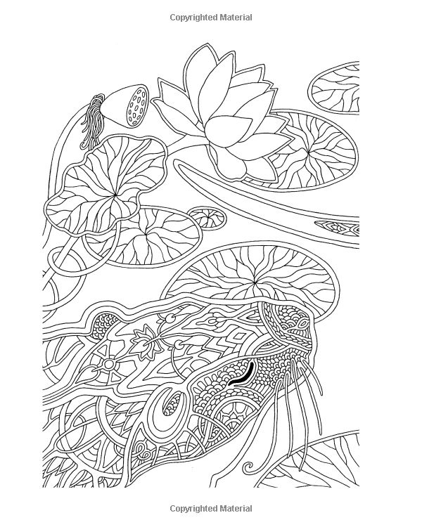 Amazon: Fox Travel: Coloring Book (9781533421784 pour Amazon Coloriage