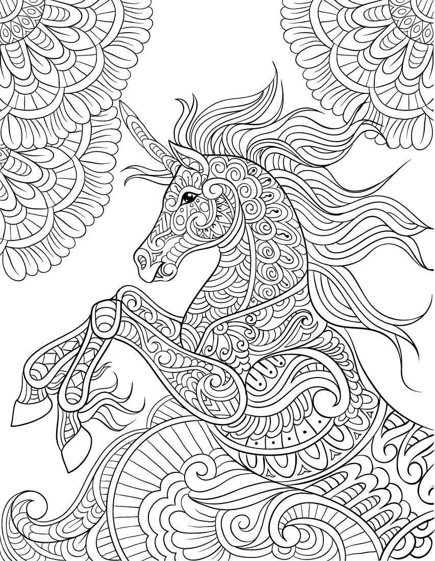Amazon: Unicorn Coloring Book (Adult Coloring Gift): A serapportantà Amazon Coloriage