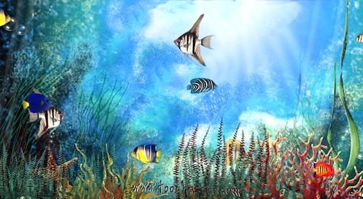 Aquarium Des Fonds D Crans Anim S Gratuits Avec Fond Ecran dedans Fond D'?Cran Avec Des Oiseaux