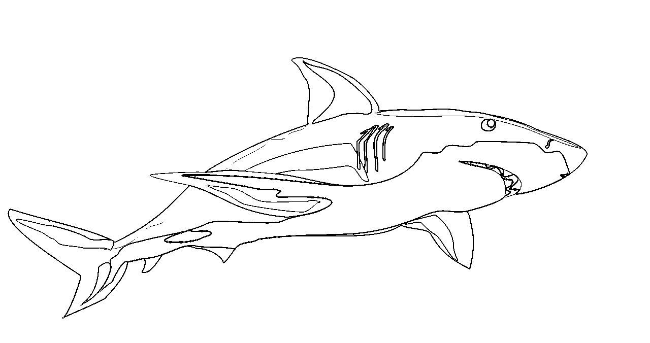 Belle Coloriage De Requin A Imprimer | Haut Coloriage Hd encequiconcerne Coloriage Requin