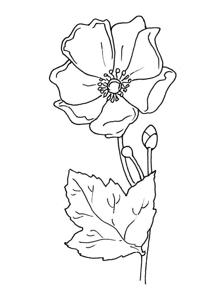Bouquet De Fleurs Dessin - Recherche Google | Dessin Fleur destiné Dessin De Fleure