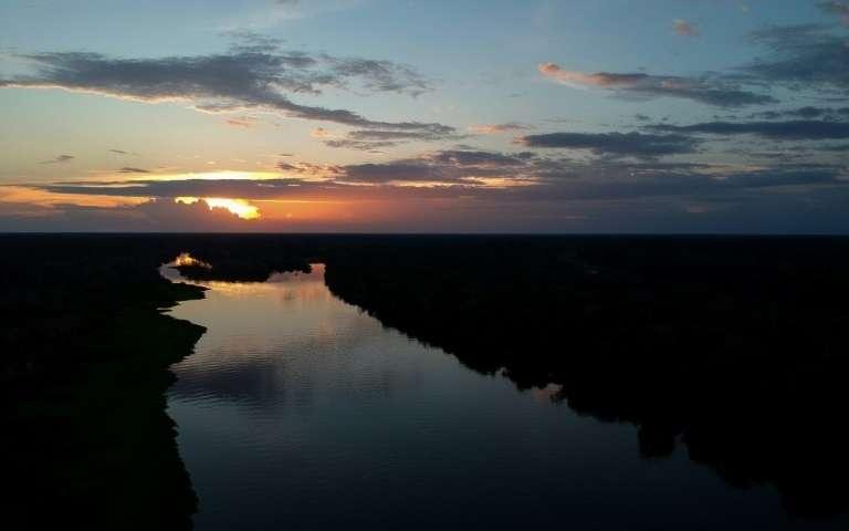 Brésil: Les Drones Au Service De La Préservation Des tout Dauphin D'Amazonie