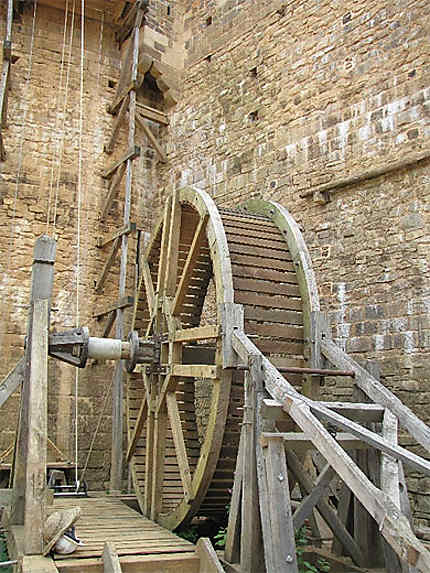 Cage D'Écureuil : Château Fort De Guédelon : Treigny encequiconcerne Photo Cage ? ?Cureuil