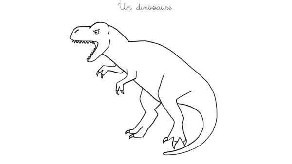 Coloriage À Imprimer : Un T-Rex dedans Comment Dessiner Un Dinosaure