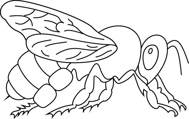 Coloriage À Imprimer : Une Abeille - Turbulus, Jeux Pour dedans Image Abeille A Imprimer