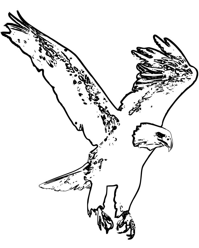 Coloriage Aigle Se Pose À Terre À Imprimer Et Colorier serapportantà Coloriage Aigle A Imprimer Gratuit