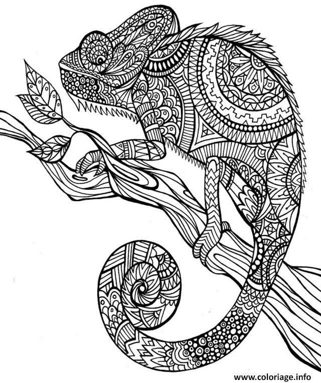 Coloriage Anti Stress Animaux Jungle Dessin À Imprimer encequiconcerne Mandala Animaux À Imprimer Gratuit