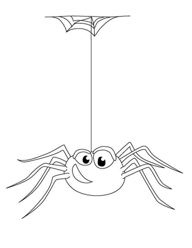 Coloriage Araignée À Imprimer Gratuitement à Toile D Araignée Dessin