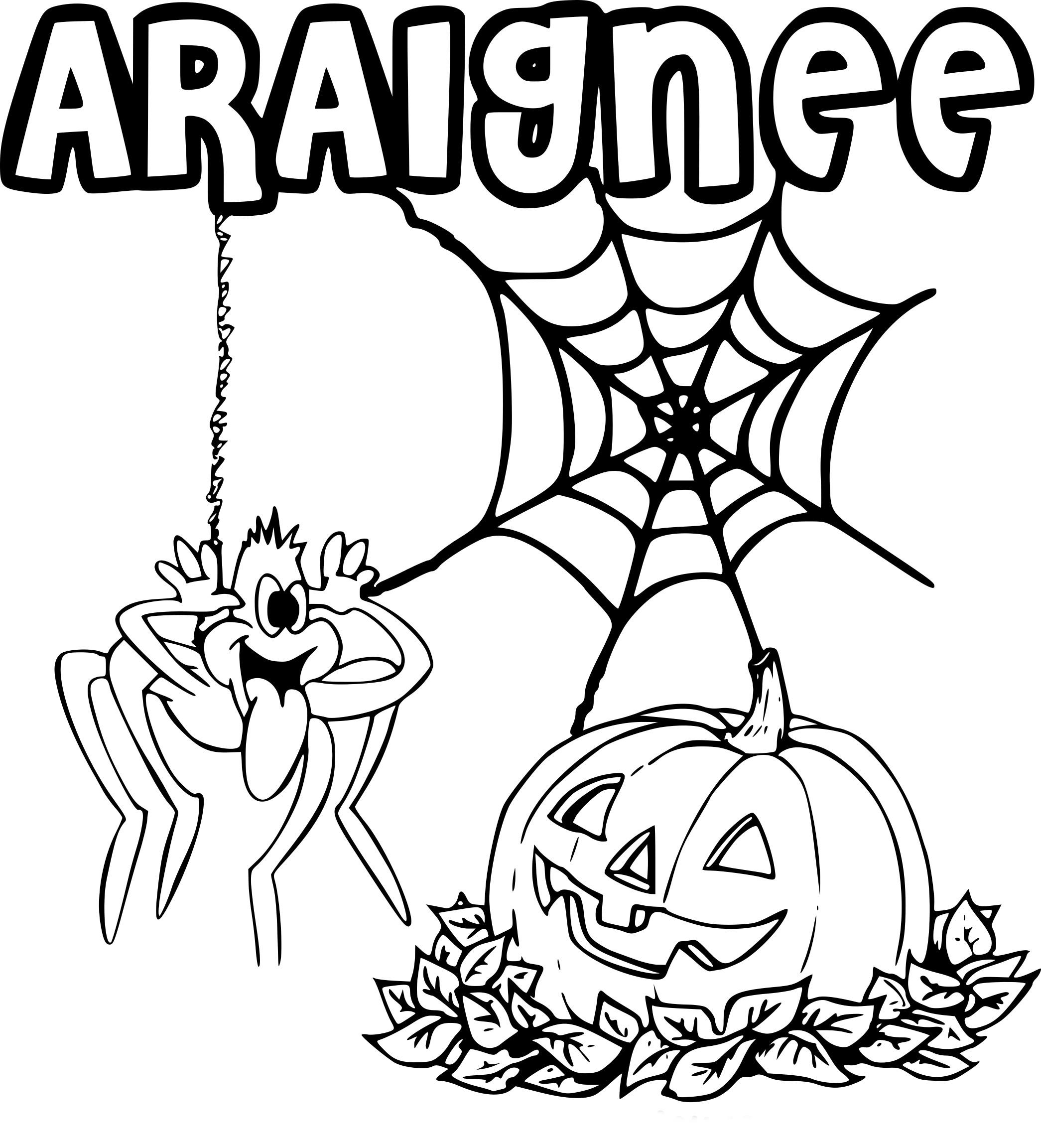 Coloriage Araignée Halloween À Imprimer concernant Coloriages Halloween À Imprimer Gratuitement