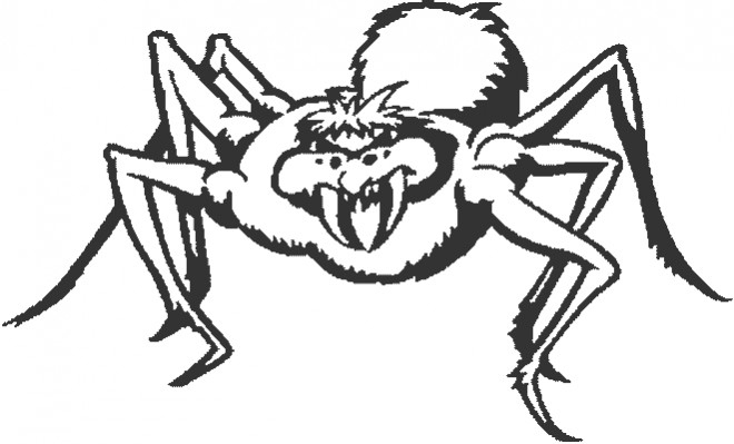 Coloriage Araignée Méchante Dessin Gratuit À Imprimer destiné Dessin Araignée Facile