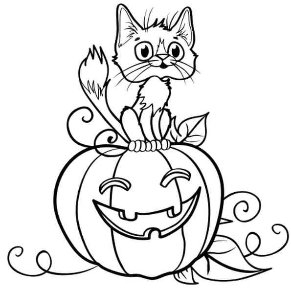 Coloriage Chat Sur Une Citrouille D'Halloween En Ligne concernant Coloriage Halloween À Imprimer Gratuit