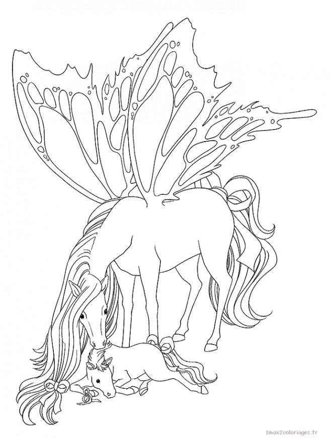Coloriage Cheval Papillon Dessin Gratuit À Imprimer destiné Coloriage Magique De Cheval