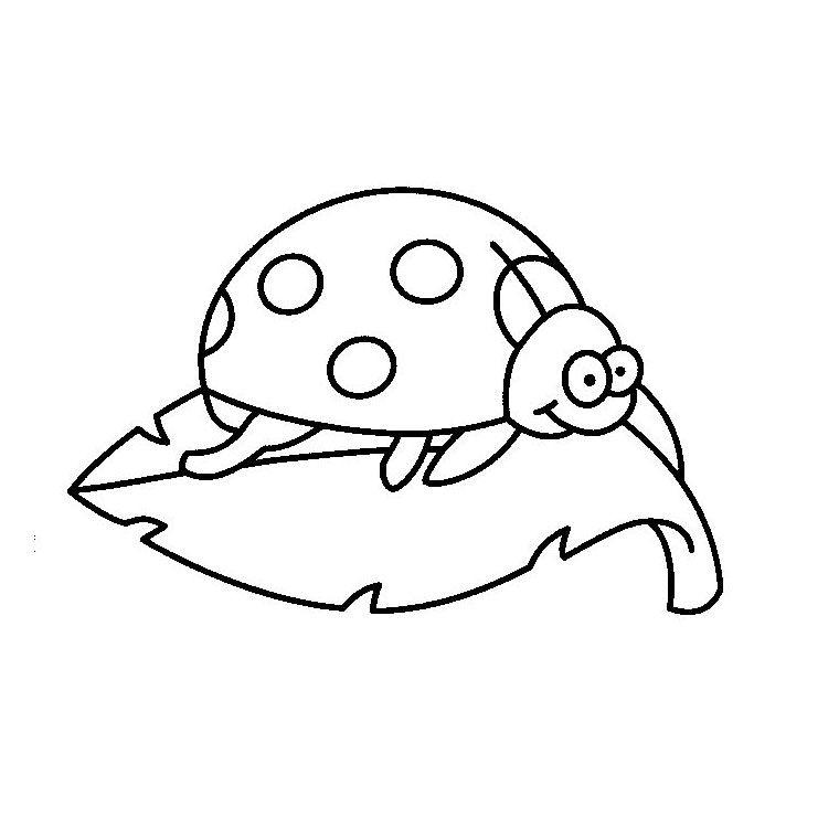 Coloriage Coccinelle | Coloriage Coccinelle serapportantà Coloriage Kangourou A Imprimer Gratuit