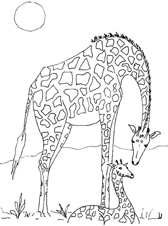 Coloriage Colorier - Coloriage Girafe Colorier concernant Coloriage De Paon Gratuit A Imprimer