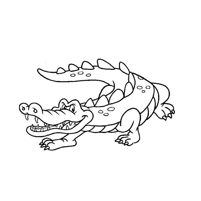 Coloriage Crocodile Du Nil avec Coloriage Crocodile A Imprimer Gratuit