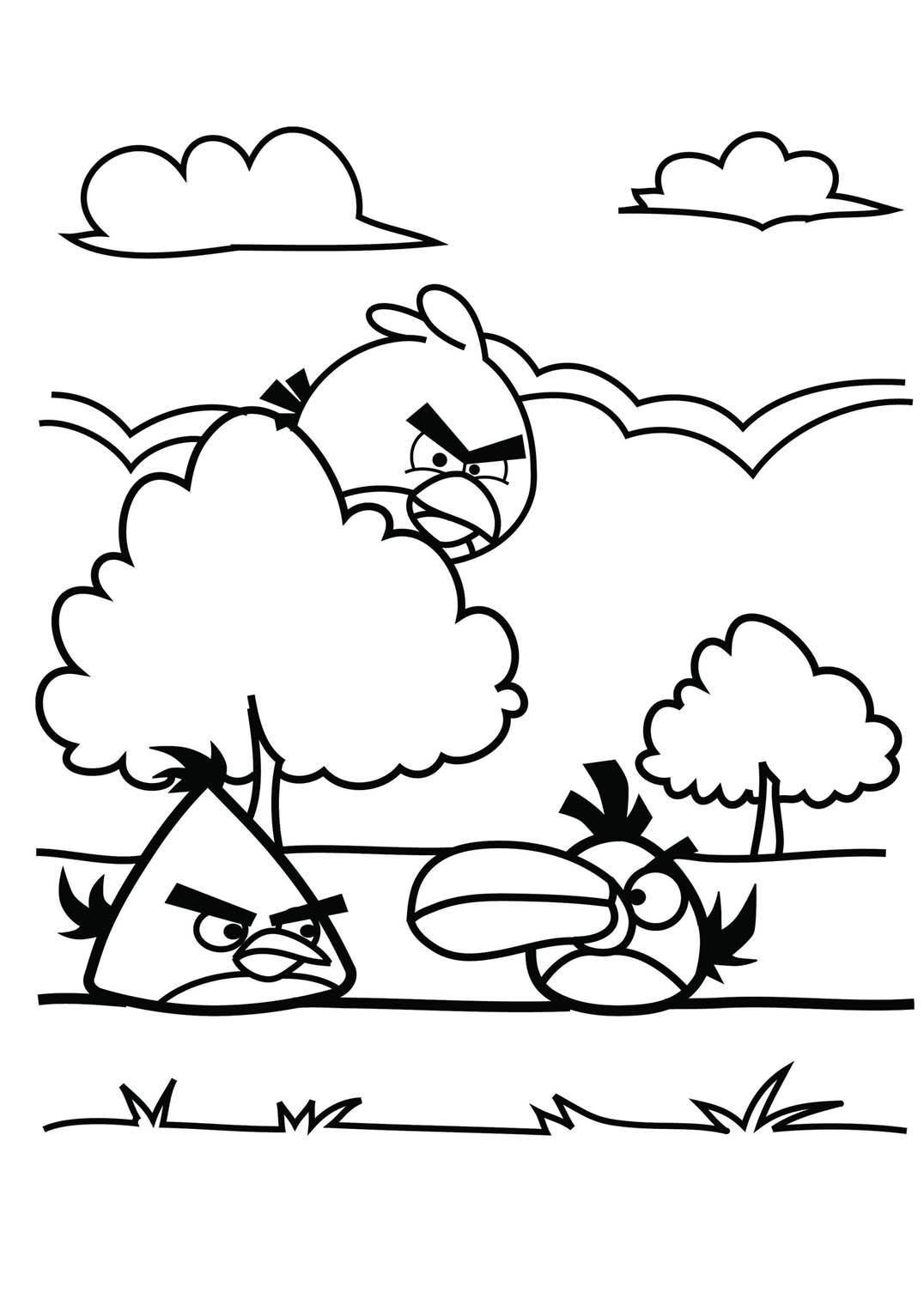 Coloriage De Angry Birds À Imprimer - Coloriage Angry à Jeux Coloriage Enfant