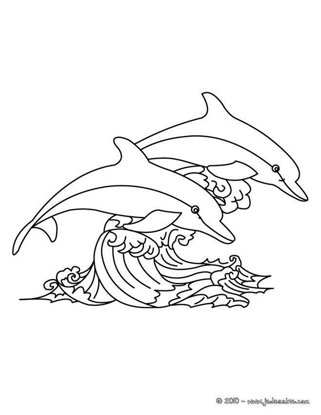 Coloriage De Dauphins Sautant Au Dessus Des Vagues. Un à Coloriage Dauphin En Ligne