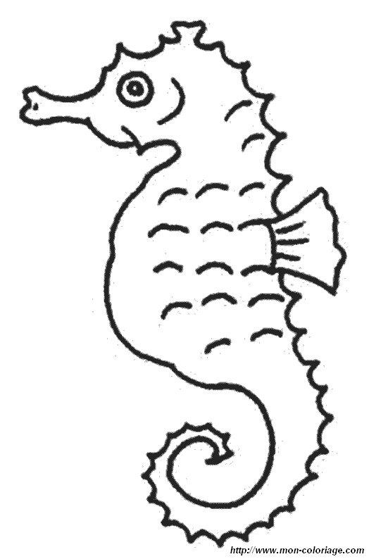 Coloriage De Hippocampe, Dessin Hippocampe15 (3) À Colorier avec Coloriage Etoile De Mer