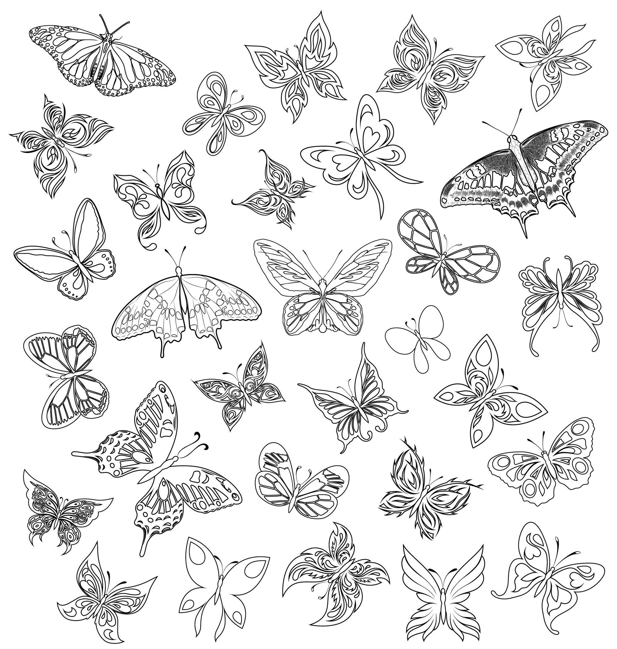 Coloriage De Papillon tout Papillon Dessin Facile