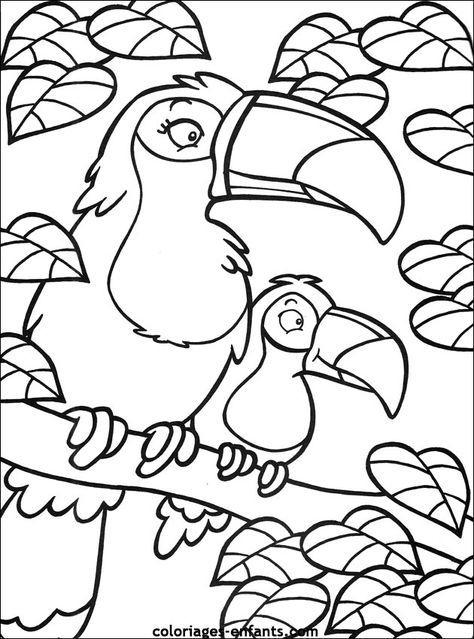 Coloriage De Perroquet Sur Coloriages-Enfants destiné Coloriage Herisson A Imprimer Gratuit