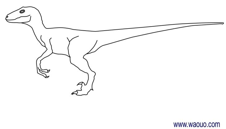 Coloriage Dinosaure Velociraptor À Imprimer Et Colorier destiné Comment Dessiner Un Dinosaure