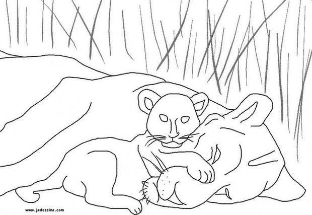 Coloriage D'Une Lionne Et De Son Lionceau. Un Joli intérieur Lionceau Dessin