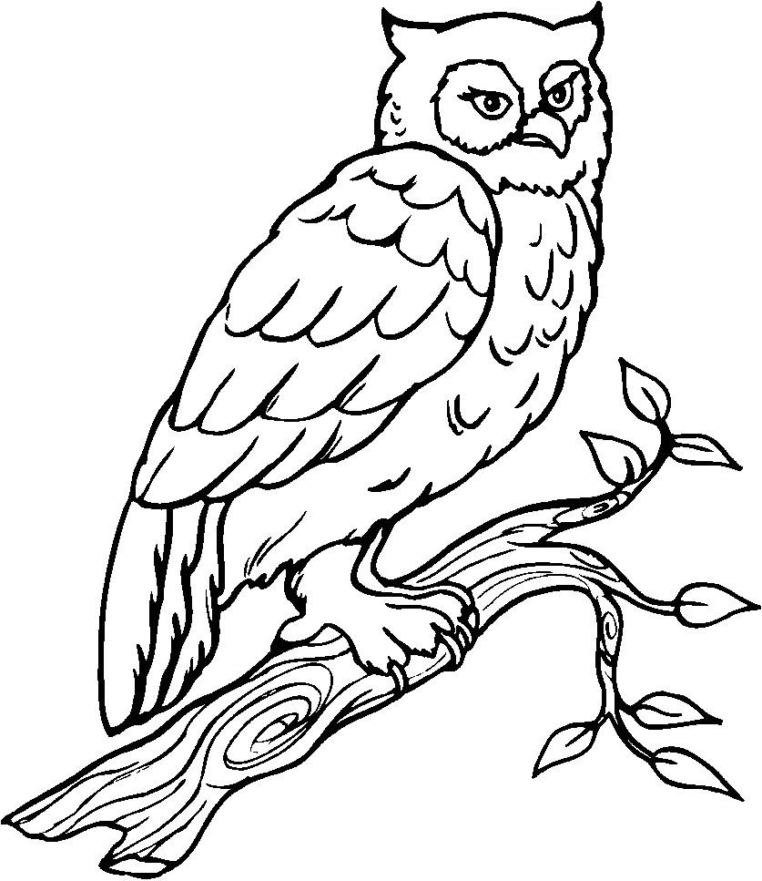 Coloriage En Ligne Oiseau Oiseaux 4 Coloriage D Oiseaux concernant Coloriage En Ligne Pour Enfant