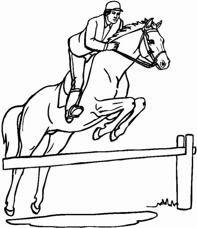 Coloriage Equitation Meilleur De Dessin De Cheval Qui concernant Coloriage À Imprimer Cheval Gratuit