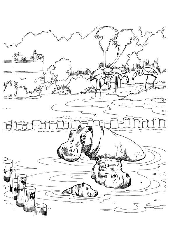 Coloriage Famille Hippopotame Dans L Eau - Animaux De La serapportantà Coloriage À L Eau