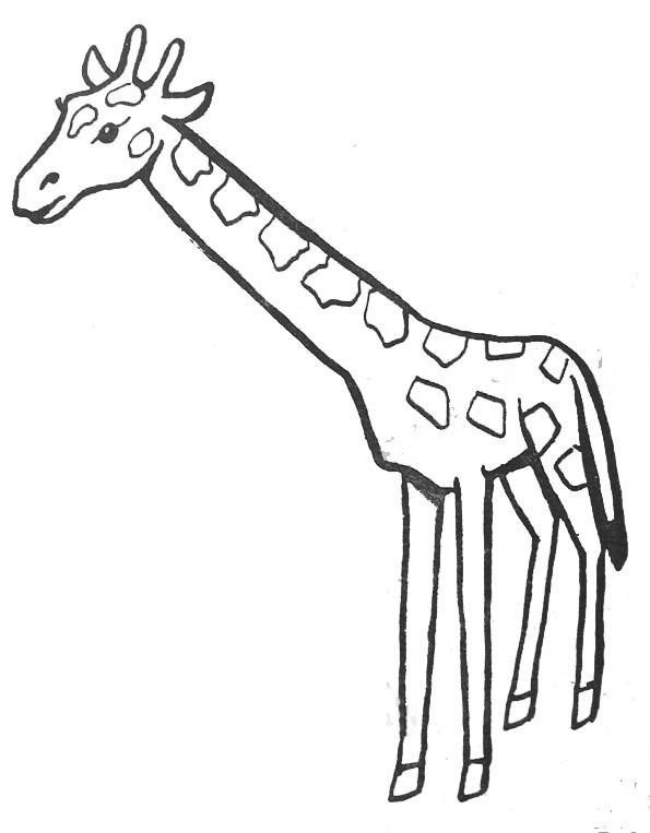 Coloriage Girafe Couleur Dessin Gratuit À Imprimer à Coloriage Girafe A Imprimer Gratuit