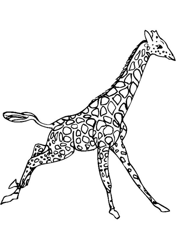 Coloriage Girafe En Sautant Dessin Gratuit À Imprimer à Coloriage Girafe A Imprimer Gratuit