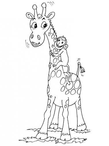 Coloriage Girafe Et Singe Dessin Gratuit À Imprimer pour Dessin Girafe Simple