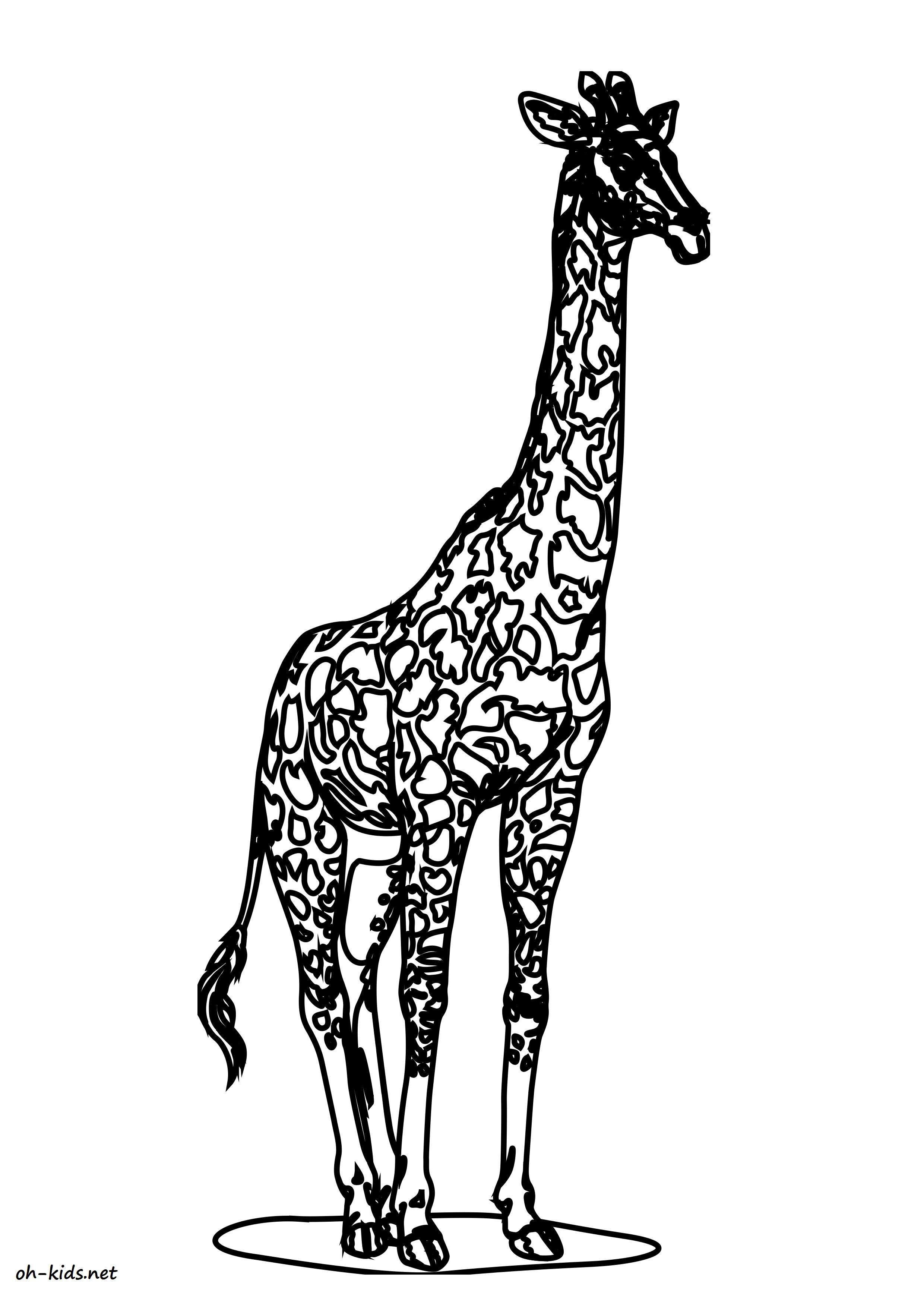 Coloriage Girafe - Oh Kids Fr dedans Coloriage Girafe A Imprimer Gratuit