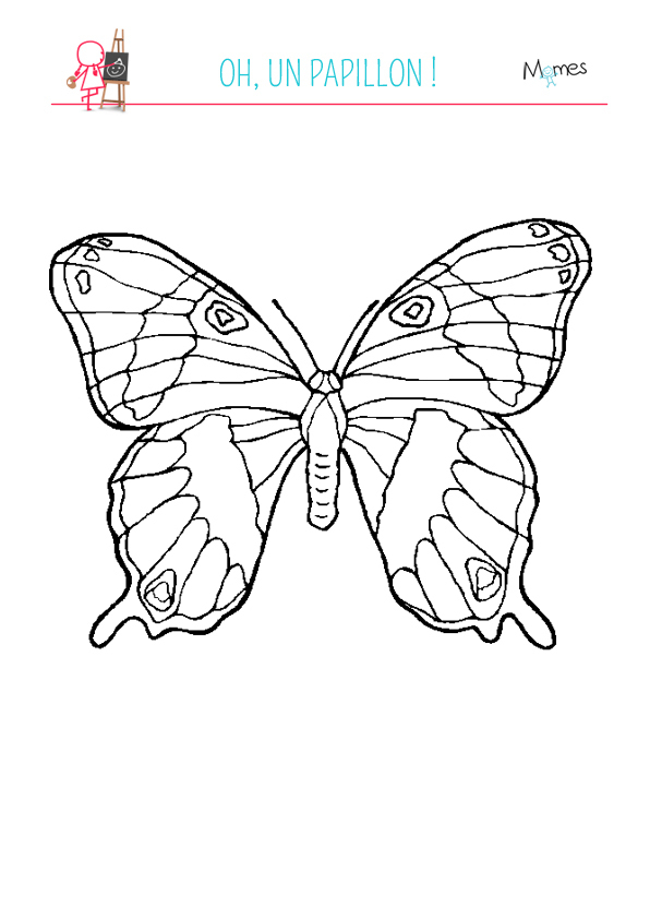 Coloriage Grand Papillon - Momes avec Coloriage Papillon